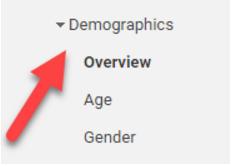 demographics-menu