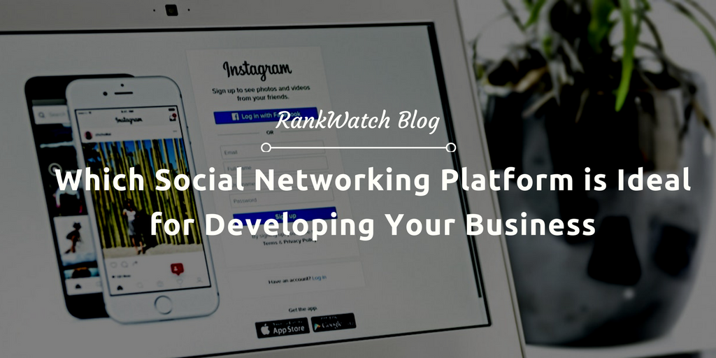 Which Social Networking Platform is Ideal for Developing Your Business