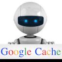 Google Cache Guide